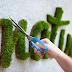 O que é Moss Graffiti?