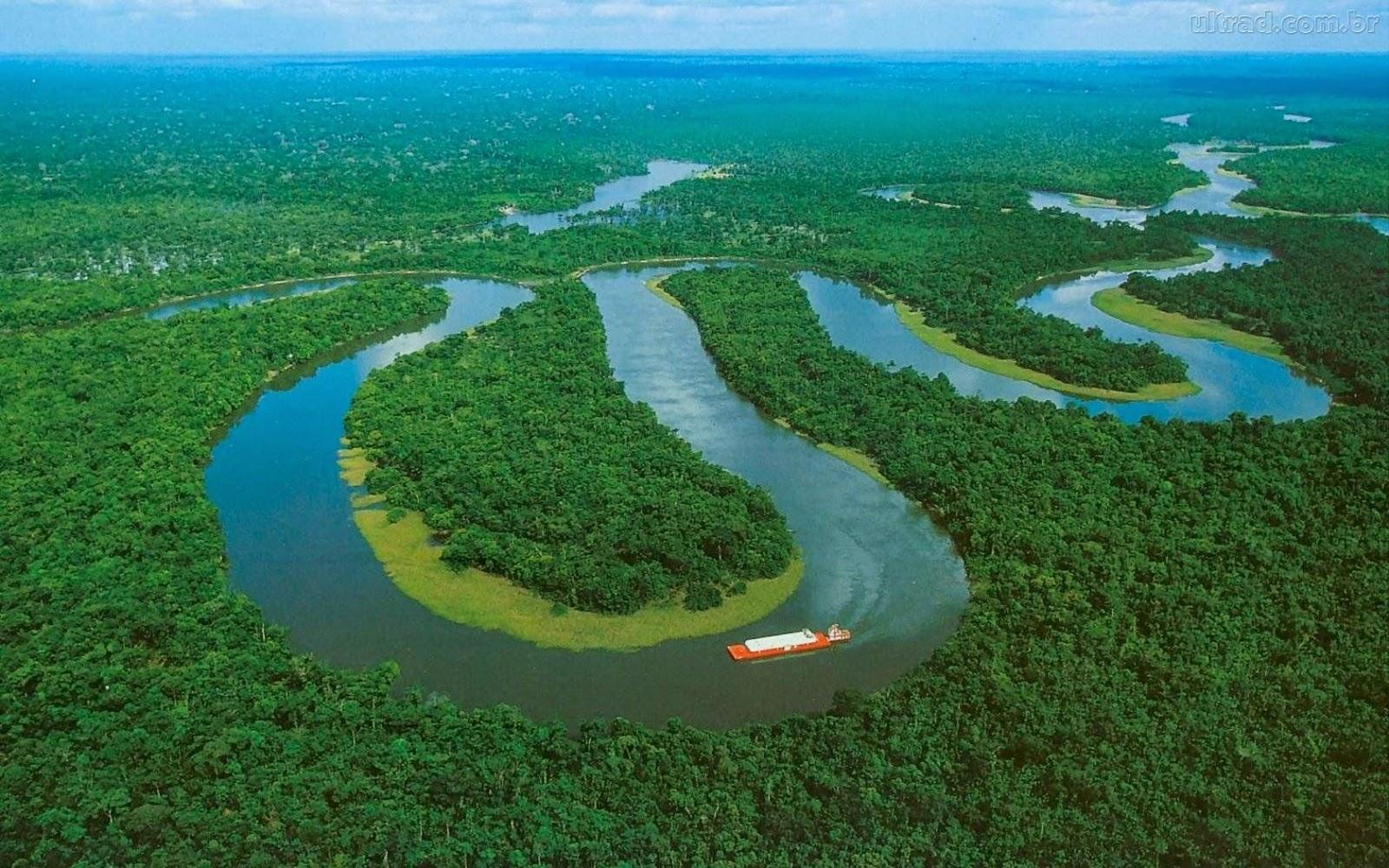 Resultado de imagen para amazonia  brasileña en venta
