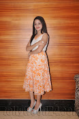 Reshma Photos at Kunstocom Launch-thumbnail-19