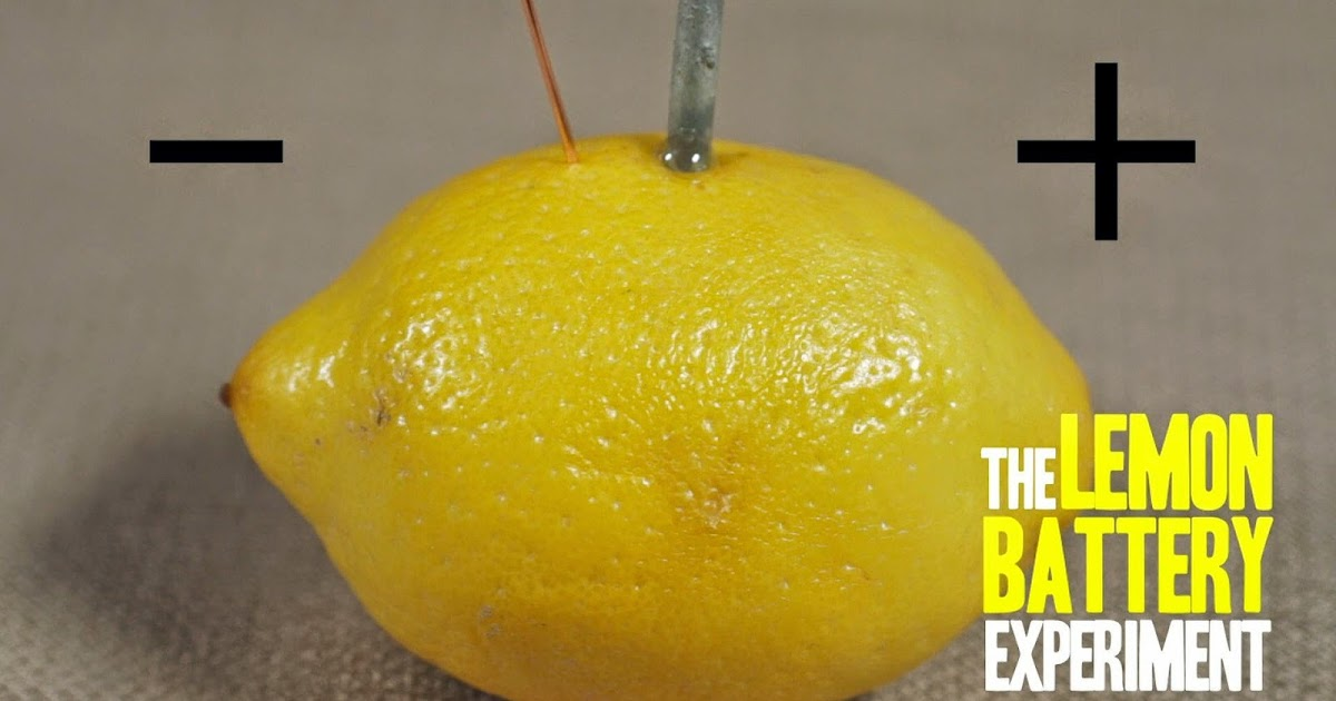 Growing Minds: Survival Tip: How To Make A Battery Out Of a Lemon