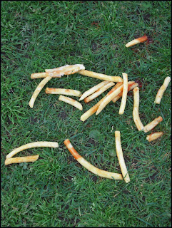 Spilled French Fries with Ketchup