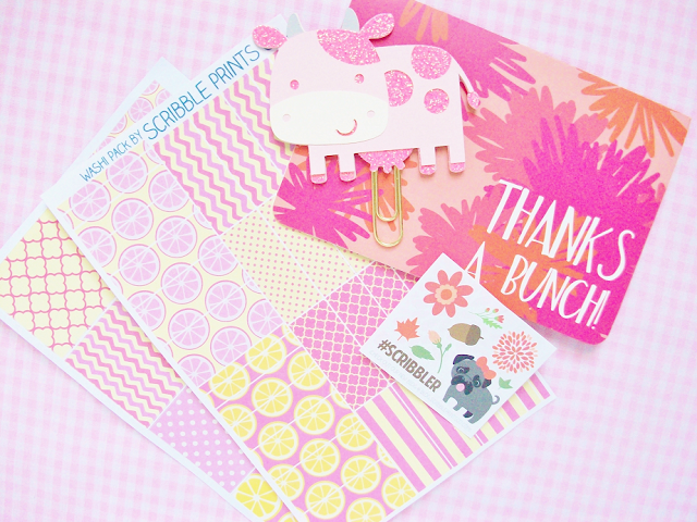 Scribble Prints Co and Angel Shoppe Sticker Haul