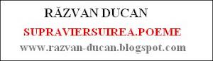 Blogul lui Răzvan Ducan