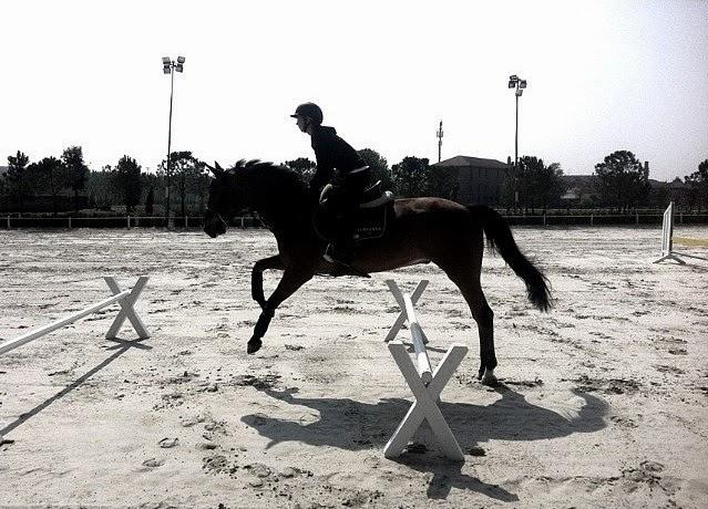 Longines conquest orologi, Jane Richard Philips, centro ippico la madonnina vinovo torino, equitazione, cavallo