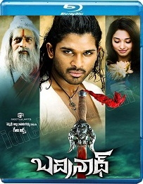 Badrinath (2011)  BluRay