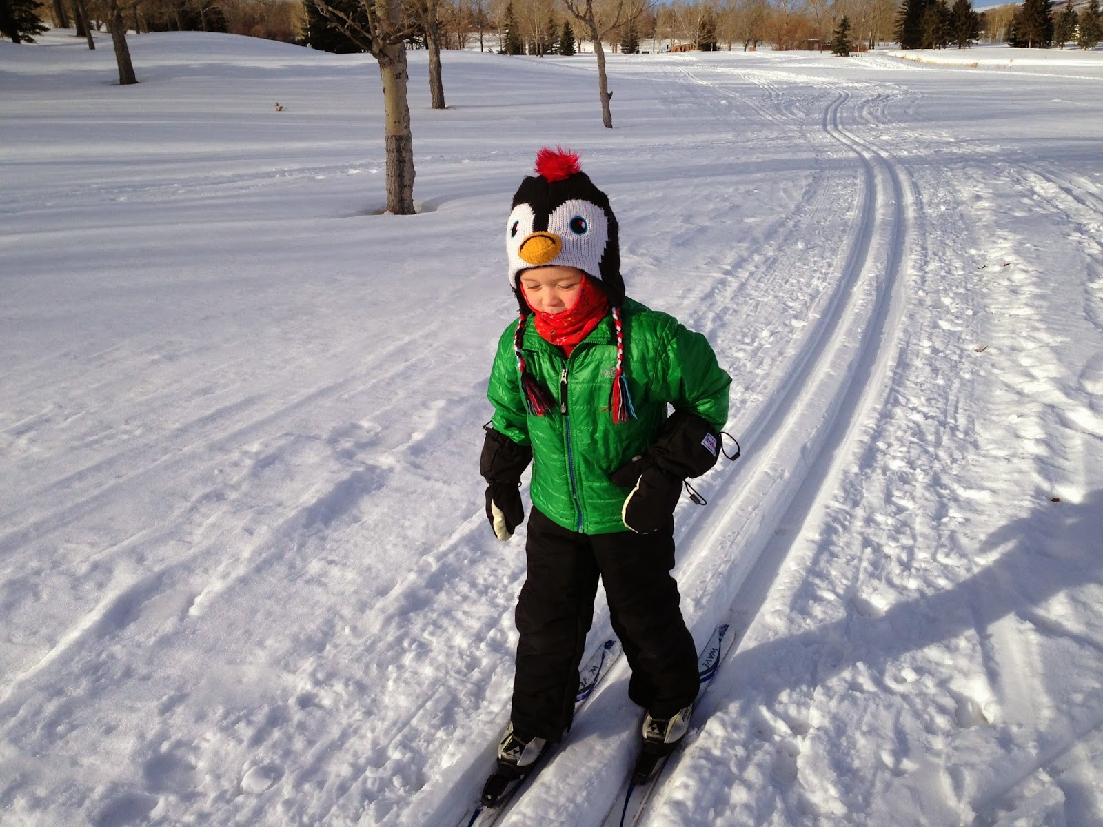 family adventures in the canadian rockies awesome snow days with