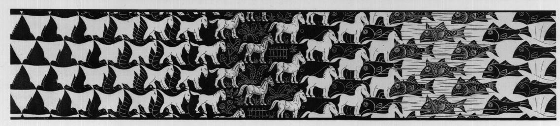 Work in progress predestinazione for Escher metamorfosi