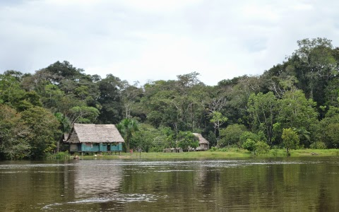 hut on the amazon
