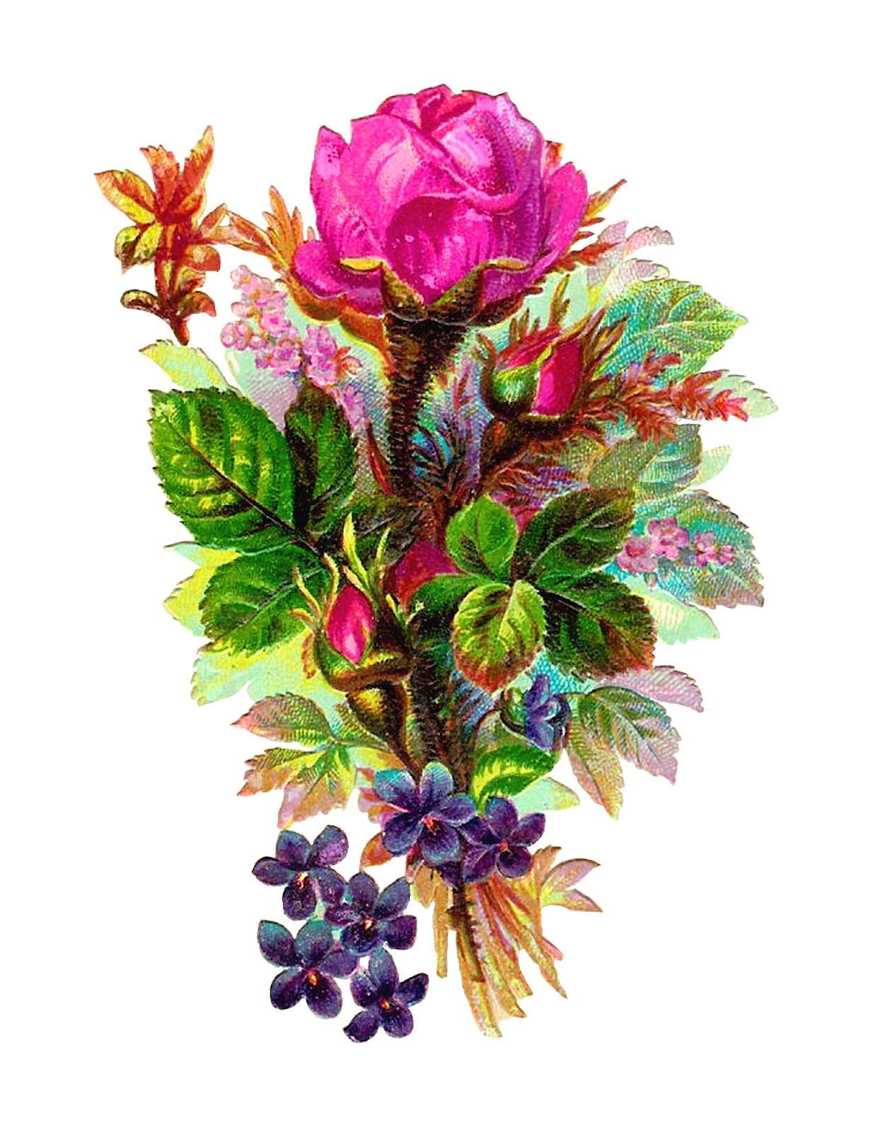 rose flowers digital design - photo #27