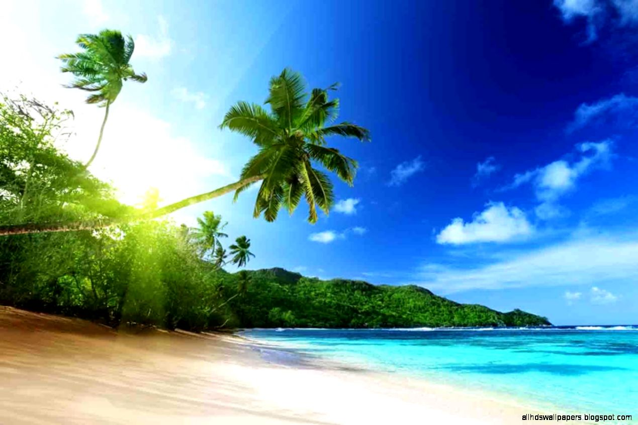 Tropical Island Wallpaper   Android Apps on Google Play