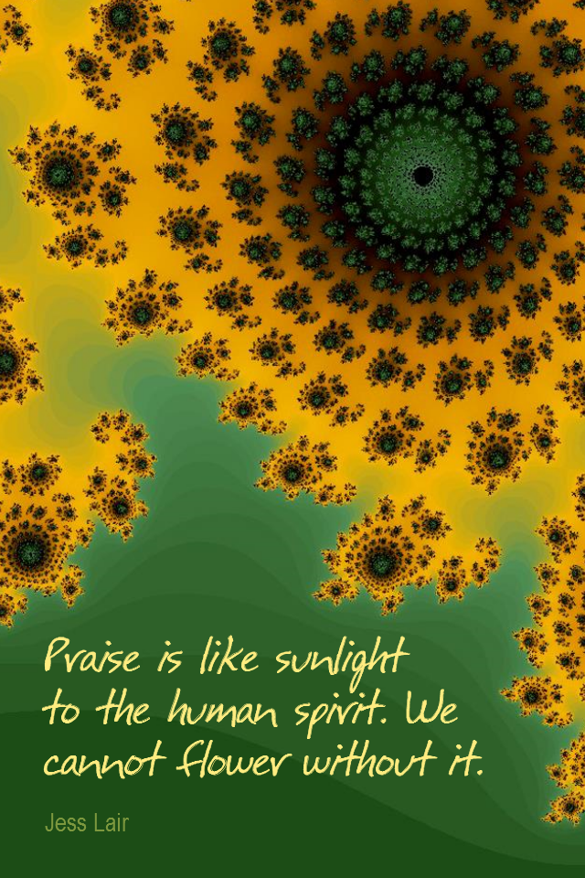 visual quote - image quotation for COMPASSION - Praise is like sunlight to the human spirit. We cannot flower without it. - Jess Lair