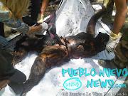Imágenes Fuertes: Vídeo y Fotos Del Accidente Donde Murieron Seis Personas .