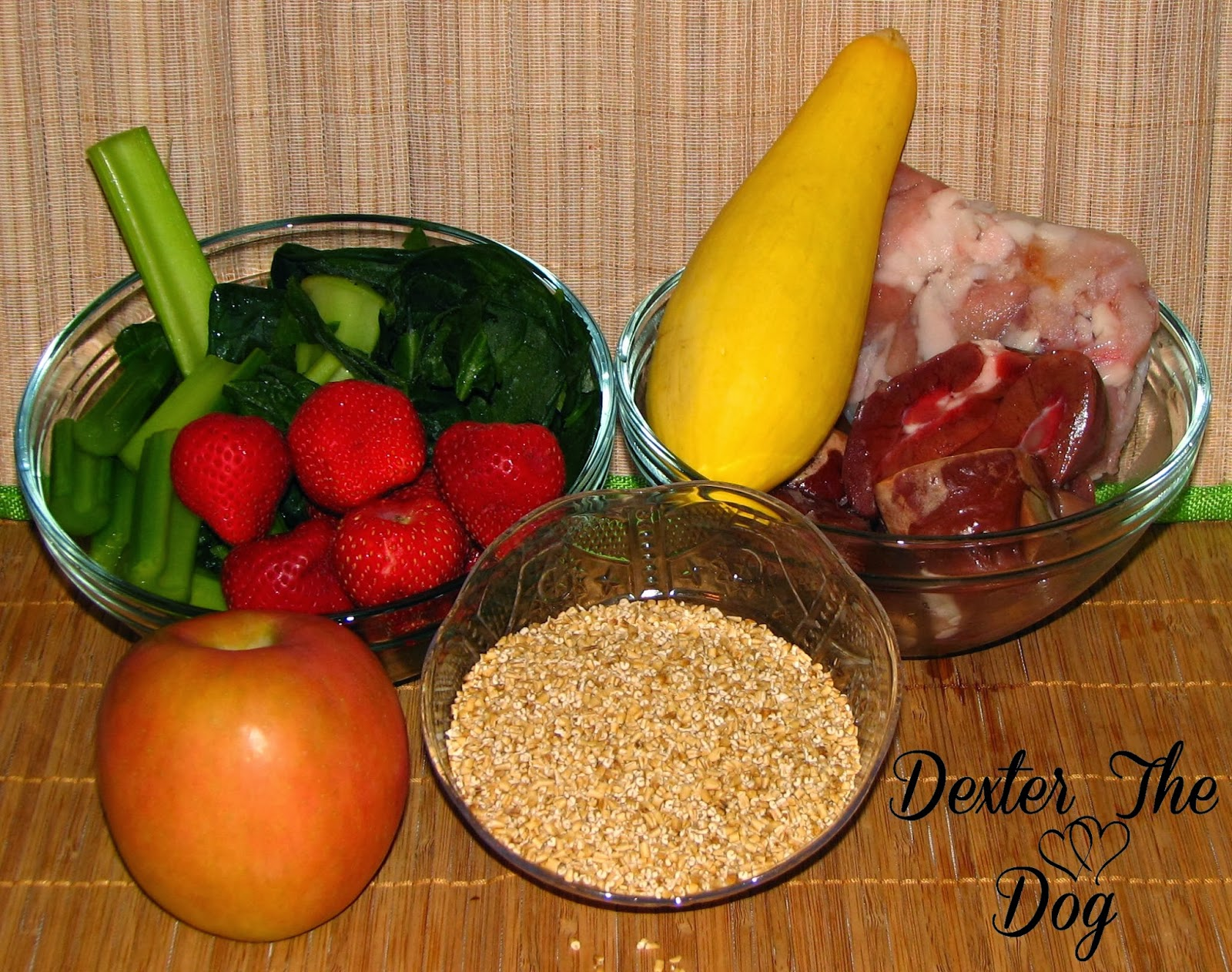 Healthy dog food archives raising your pets naturally with tonya healthy home cooked dog food recipes alligator oatmeal forumfinder Gallery