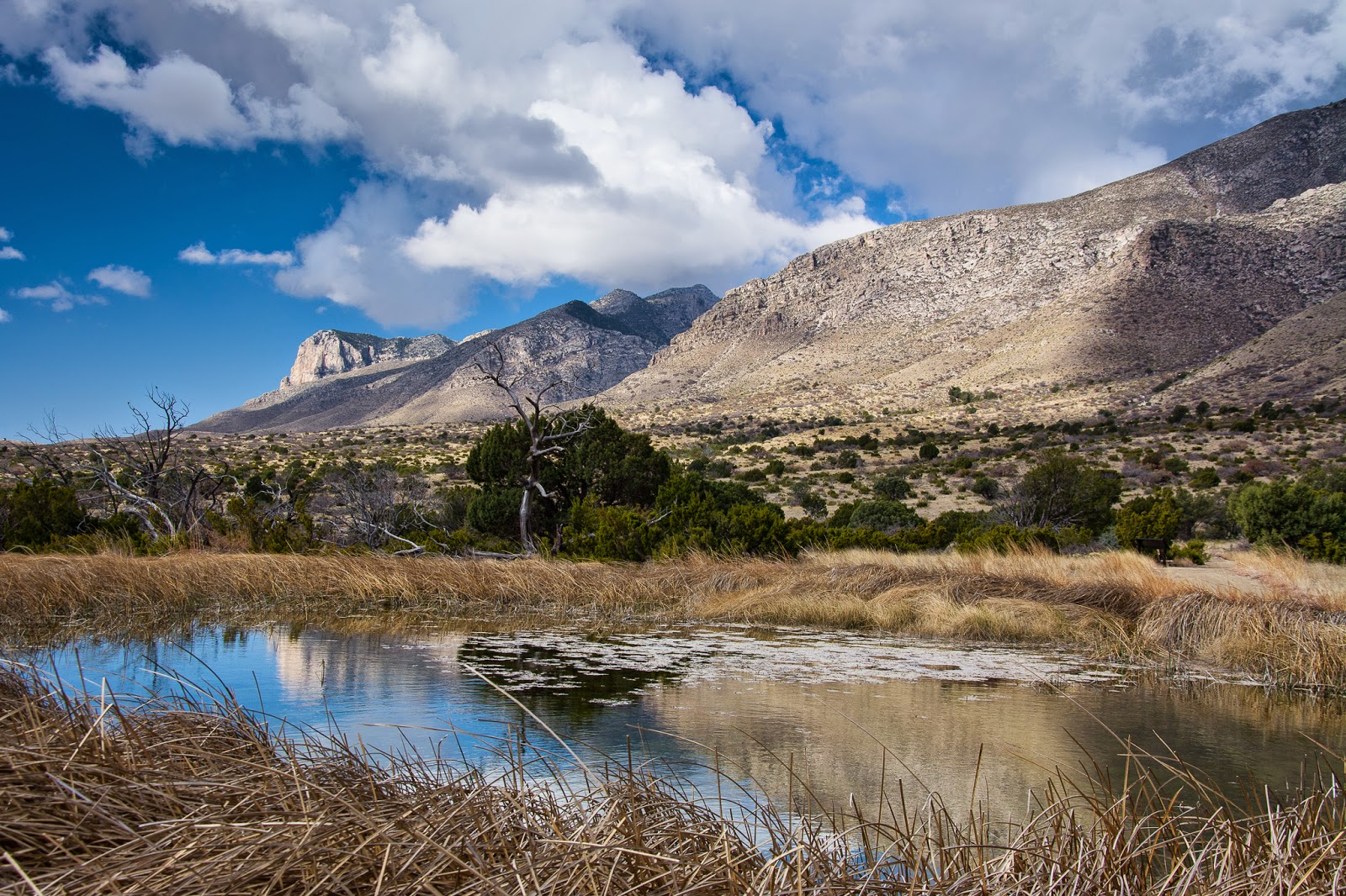 Manzanita Spring, Guadalupe Mountains National Park