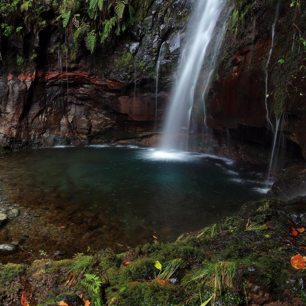 http://3.bp.blogspot.com/-PnvMWGxNy_0/Tm4Eh31mLWI/AAAAAAAAB0Q/YhHDHhA_8vQ/s1600/waterfall-wallpaper-ipad.jpg
