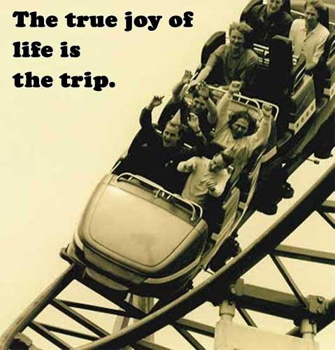 roller coaster 1995
