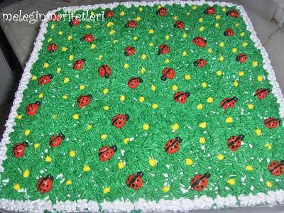 Uğur böceği pasta....