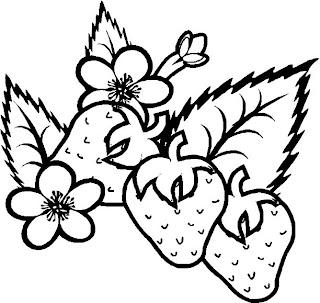 Desenhos Para Colorir Moranguinho gostoso