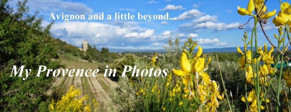 Avignon in Photos