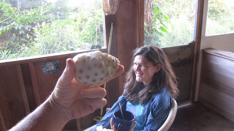 wwoof hawaii usa adaptations
