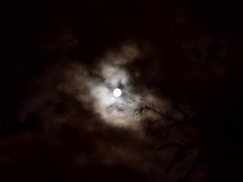 yule lune