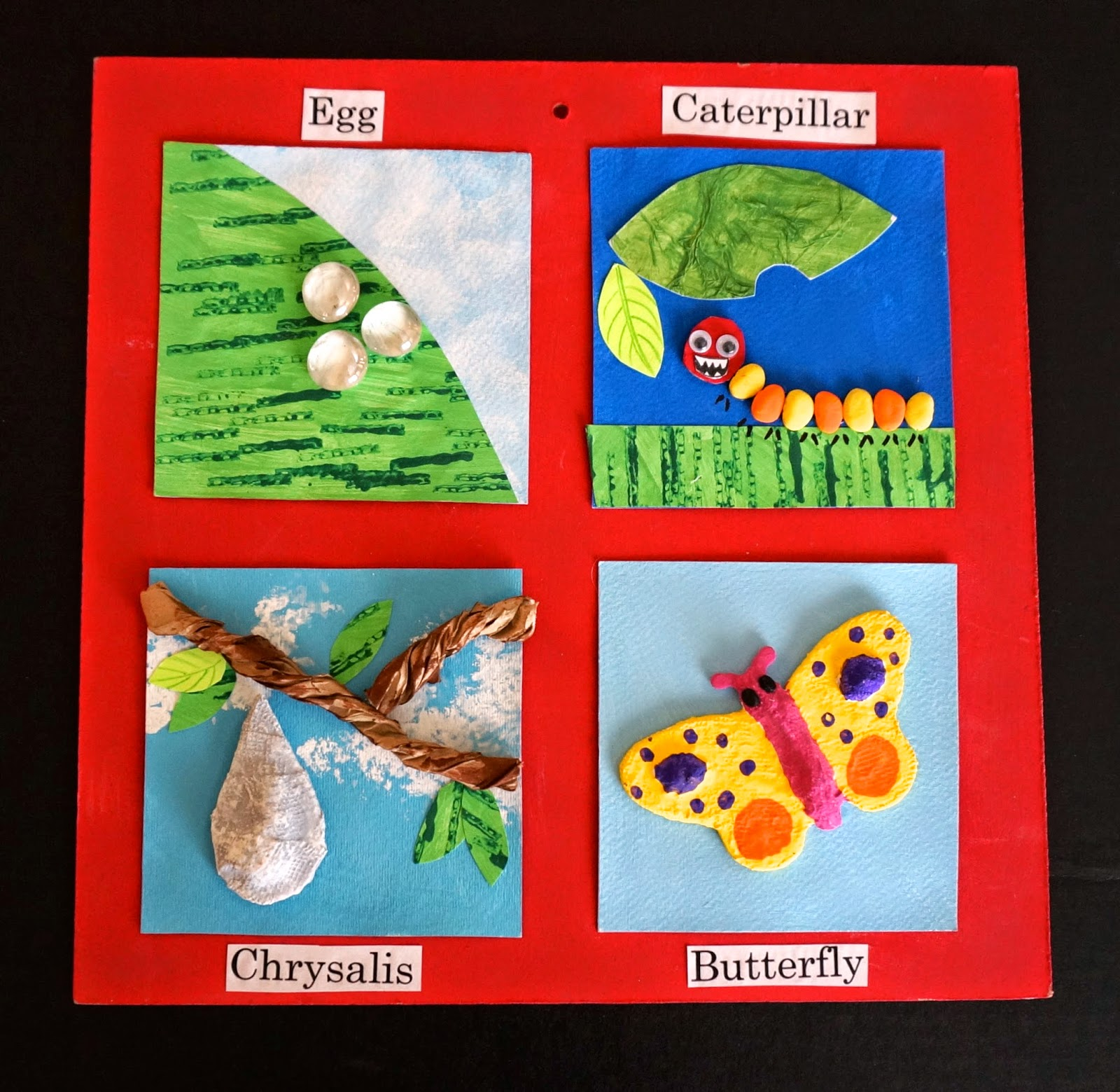 Life cycle of butterfly model - photo#17