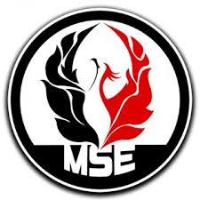 Movimento Sociale Europeo