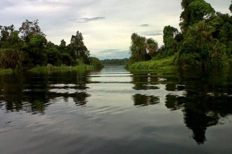 Danau Zamrud Siak