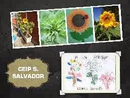 http://www.kizoa.es/diapositivas/d6298576k2603414o1/xirasois