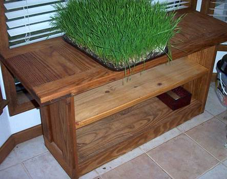 Shelves for growing wheatgrass