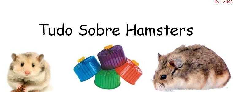 | Tudo Sobre Hamsters |