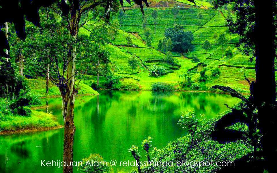 pemandangan indah  kehijauan alam semulajadi