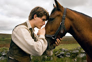 The fourlegged protagonist in WAR HORSE is born as a wild thoroughbred, .