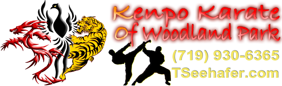 Kenpo Karate of Woodland Park