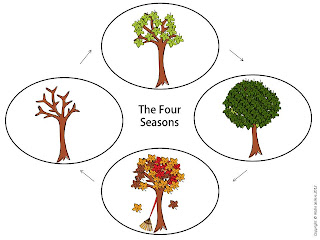four seasons of a tree poster