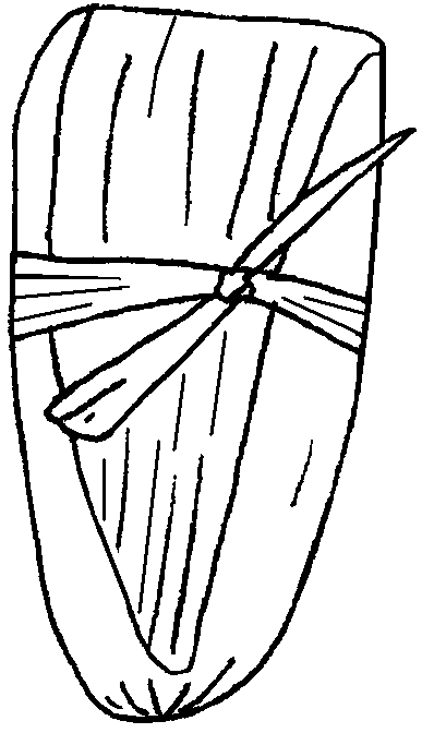 tamales coloring pages - photo #1