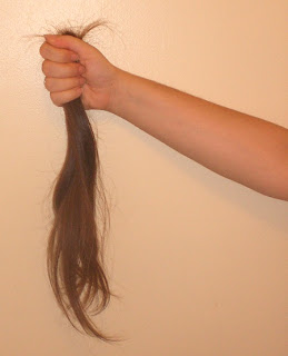 Over a foot of cut hair.
