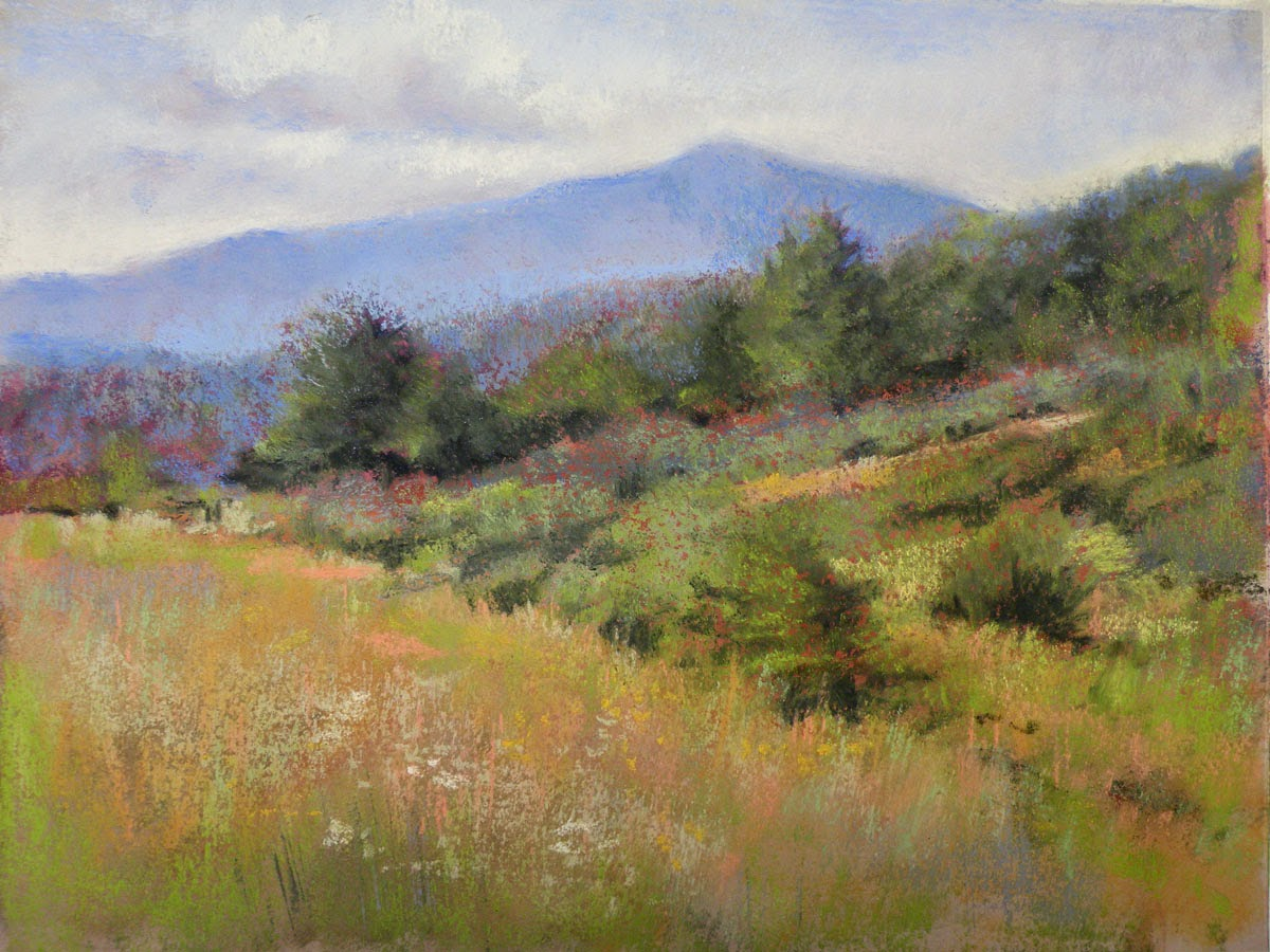 Sandra Kavanaugh Fine Art June 2014