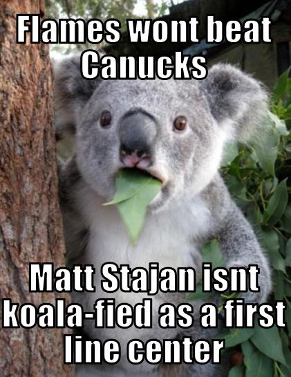 Canucks Flames Memes Koala-ified