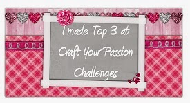 TOP 3 na Craft Your Passion