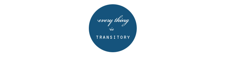 every thing is transitory