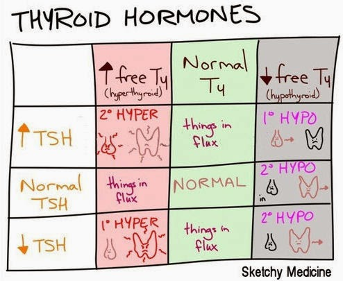 Medical Laboratory and Biomedical Science: Thyroid hormone ...