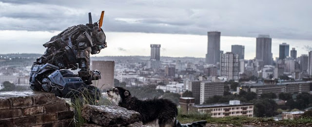 Chappie dog still