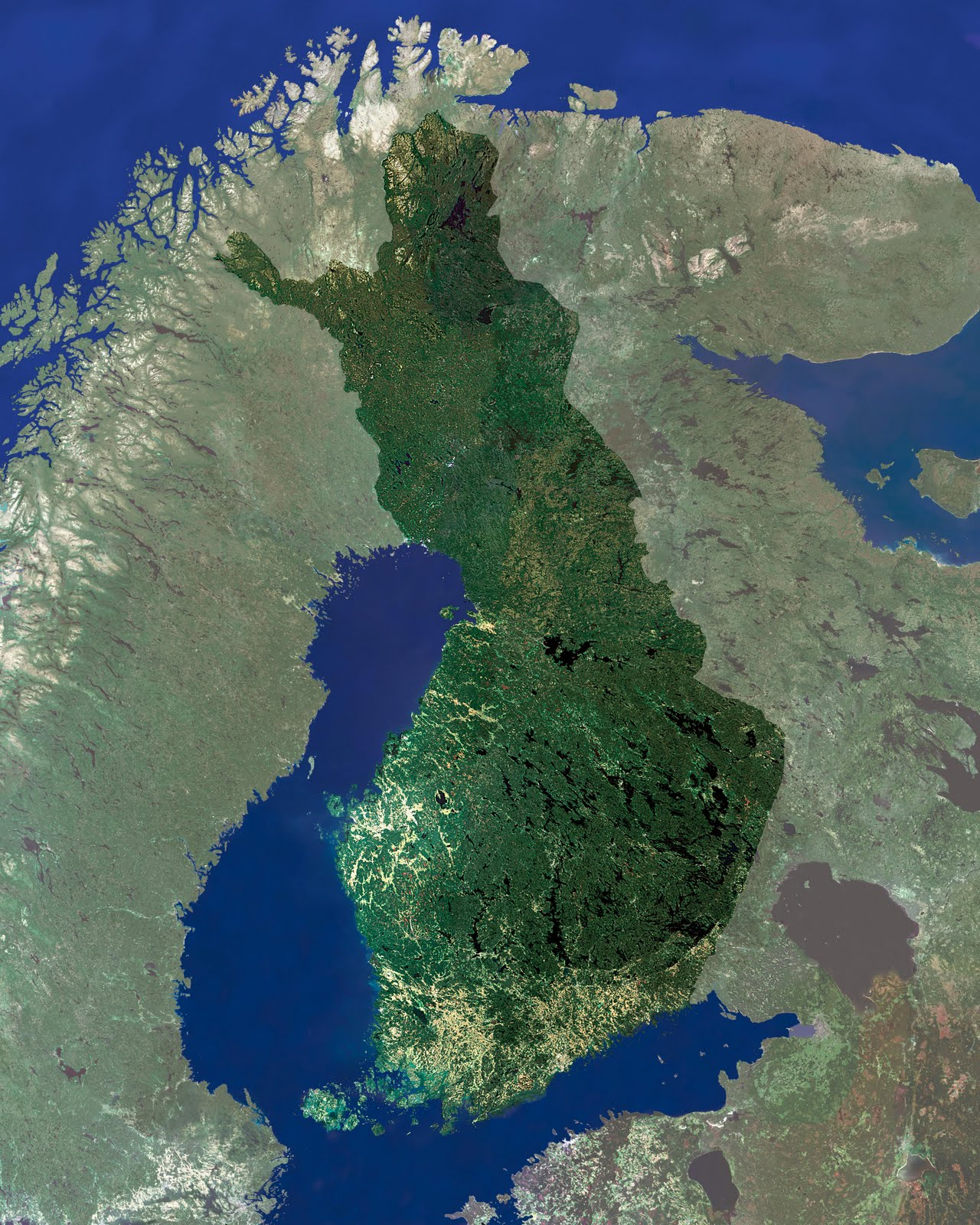 tallinn eskort prostituutio suomessa laki