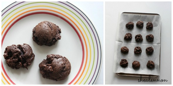 Tried it: Brownie Cookies | www.shealennon.com