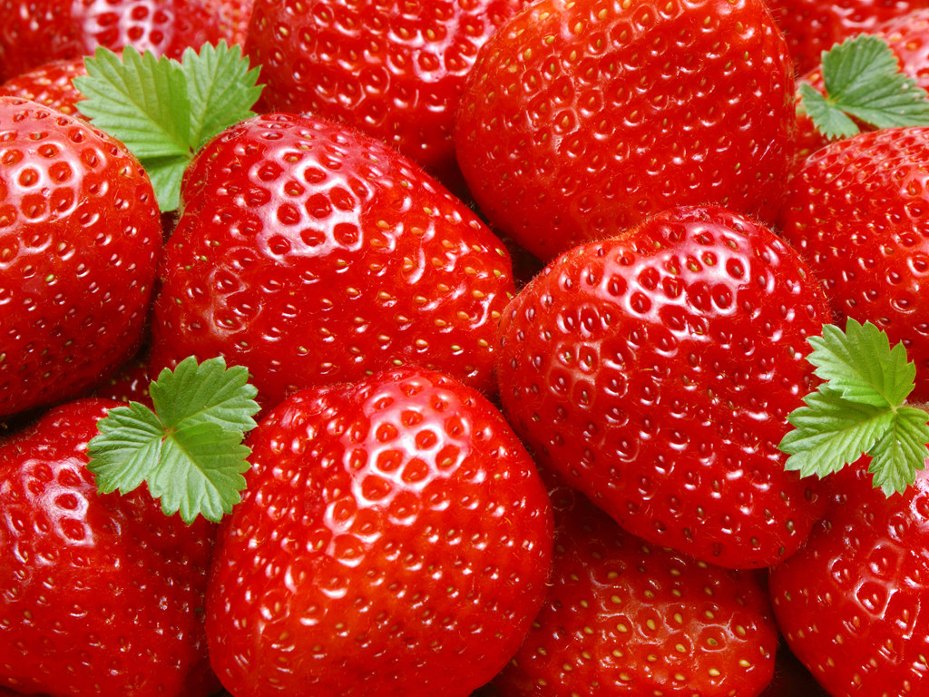 Download strawberry wallpapers | Most beautiful places in ...