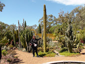 Open Gardens- Cactii Garden