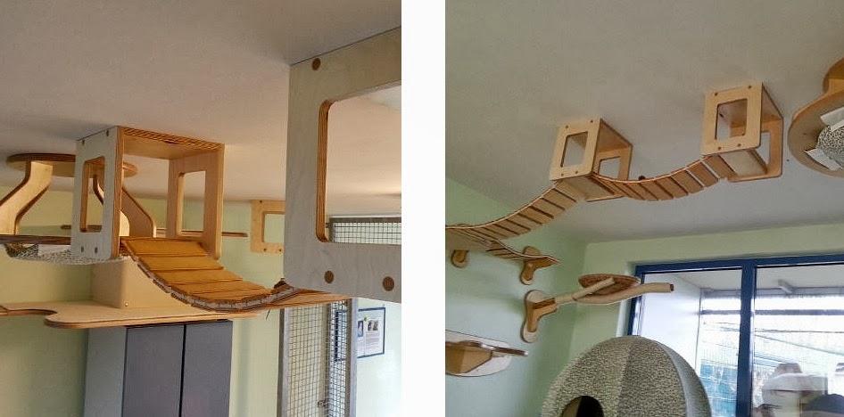 brice cornet serial entrepreneur h doniste un. Black Bedroom Furniture Sets. Home Design Ideas
