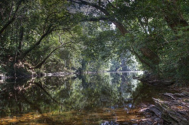 Taman-Negara-Indonesia