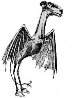 Jersey devil, kelelawar bersejarah